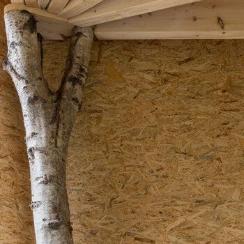Tuin paviljoen Boechout - Detail boom - PAEN architectuur